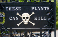 'These plant can kill' warning sign at the entrance of Alnwick Poison Gardens