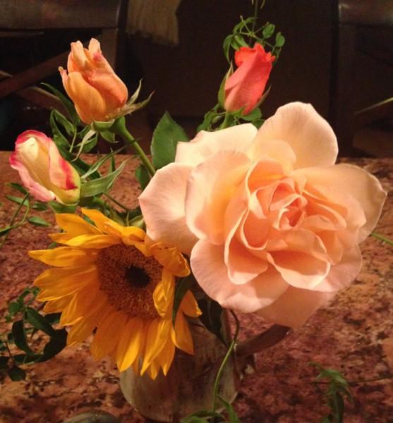 Love & The Rose Garden