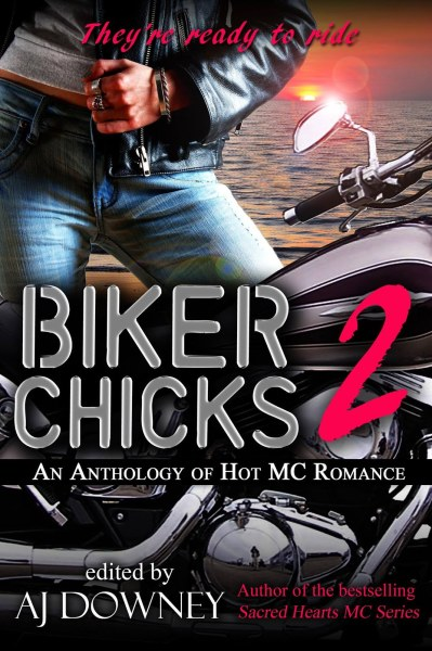 Biker Chicks Vol 2