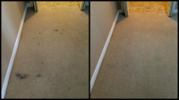 Before and after images of ink stains removed from residential carpets