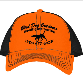 BDO Orange/Black Hat $15