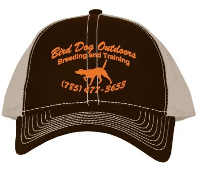 BDO Brown Hat $15