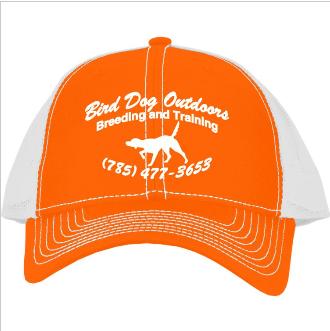 BDO Orange/White Hat $15