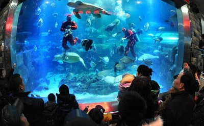 Changsha Underwater World
