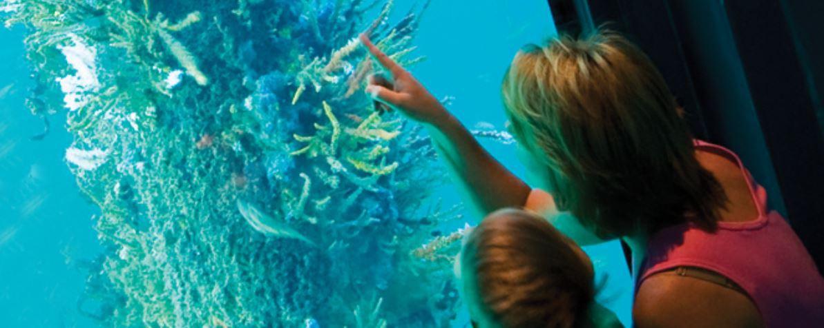 Busselton Jetty Underwater Observatory, Western Australia