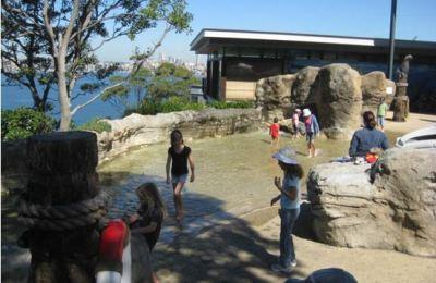 Taronga Zoo Shoreline Pool