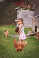 Medina Oh Family Farm Photograph