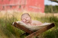 akron oh newborn photographer