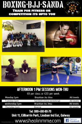 1pm Afternoon classes at Shaolin Gym