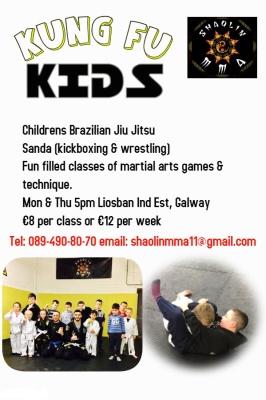 Childrens Brazilian Jiu Jitsu (Kungfu Kids)