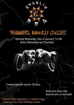 Beginner MMA/BJJ Course 10th January 2018