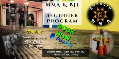 Beginner MMA & BJJ Program