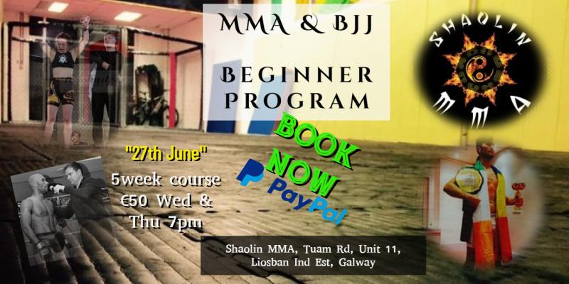 Beginner MMA & BJJ Program