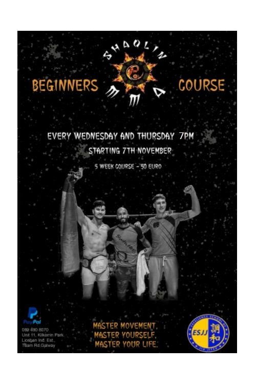 Beginner MMA Course Nov 7th