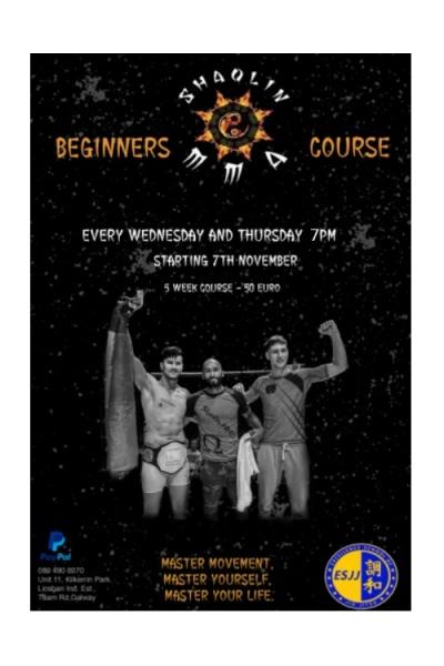 Beginner MMA Course Nov 7th