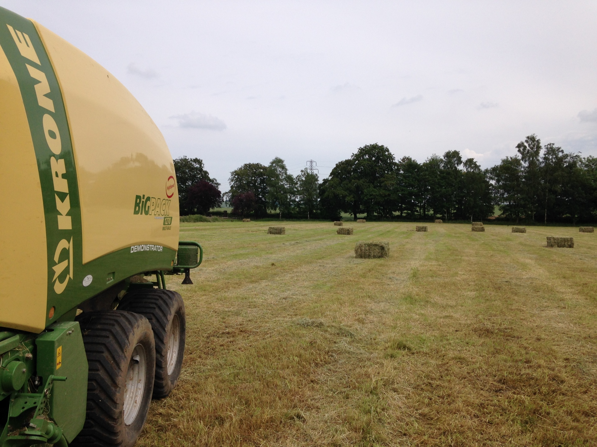 Hay and Straw sales
