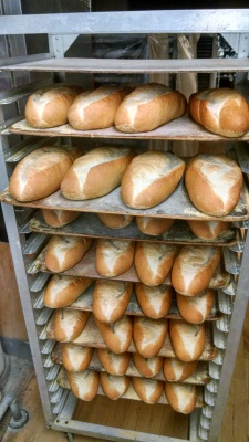 Fresh Italian Bread and Buns