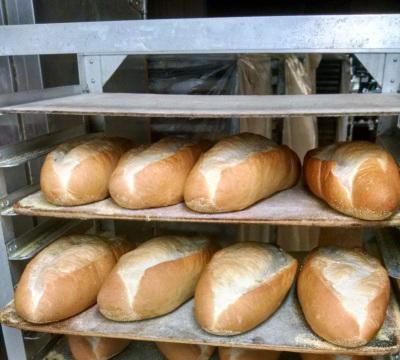 Pure Italian Breads