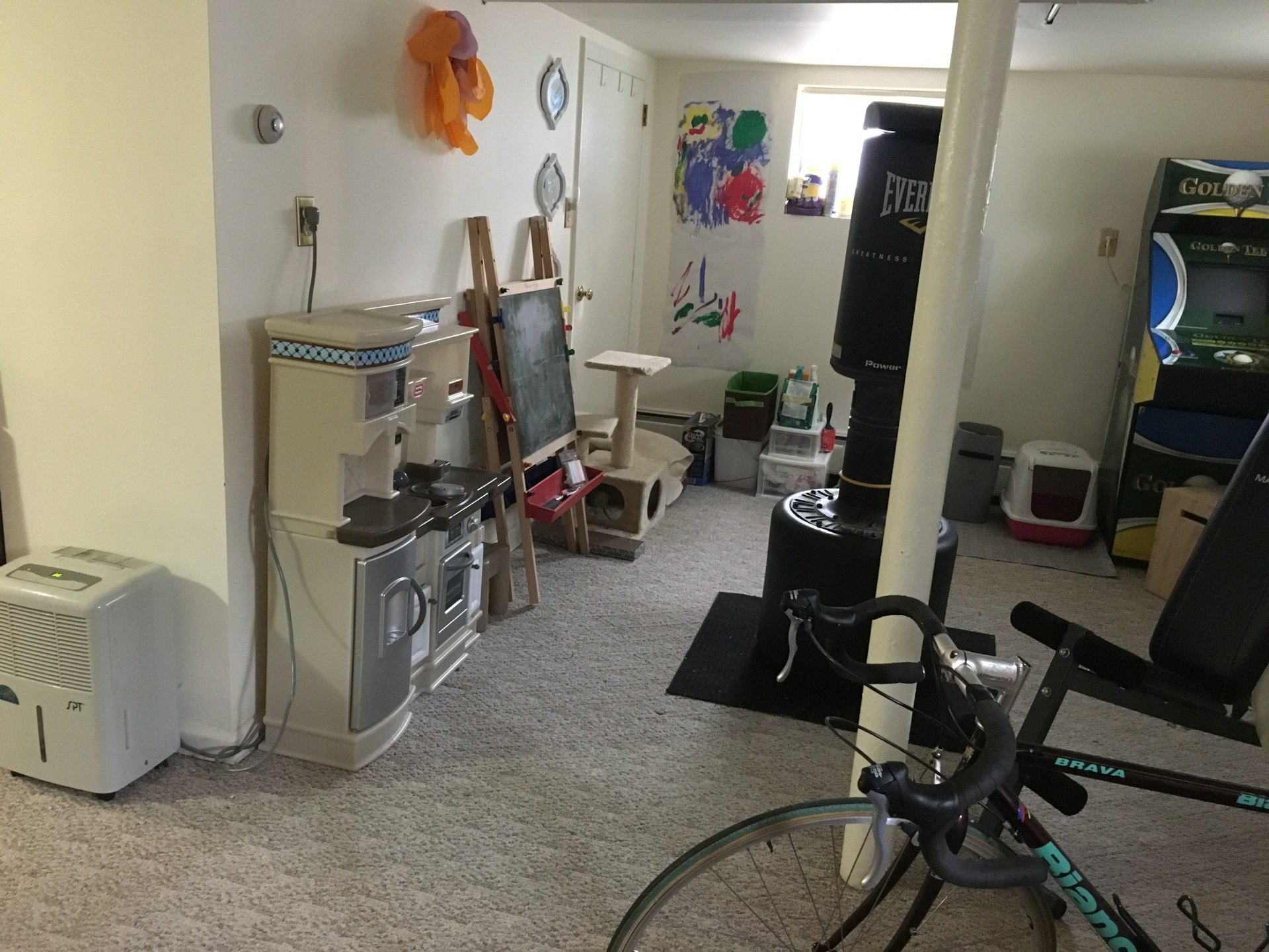 Now... part exercise room, part play kitchen, part cat habitat.  But somehow, it all works!