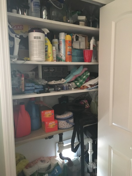 Utility closet in the laundry room....