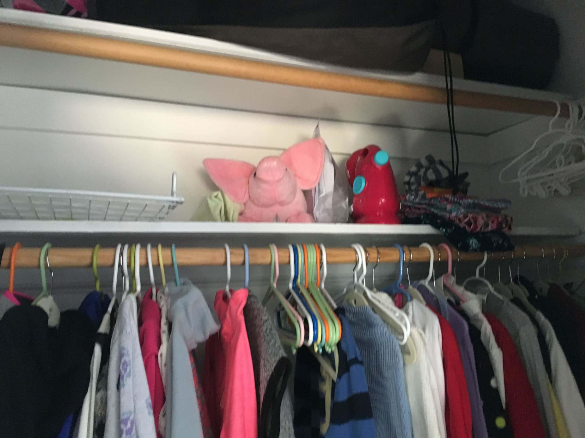 Have a ton of room to work with... double closet, shelf for the piggy....