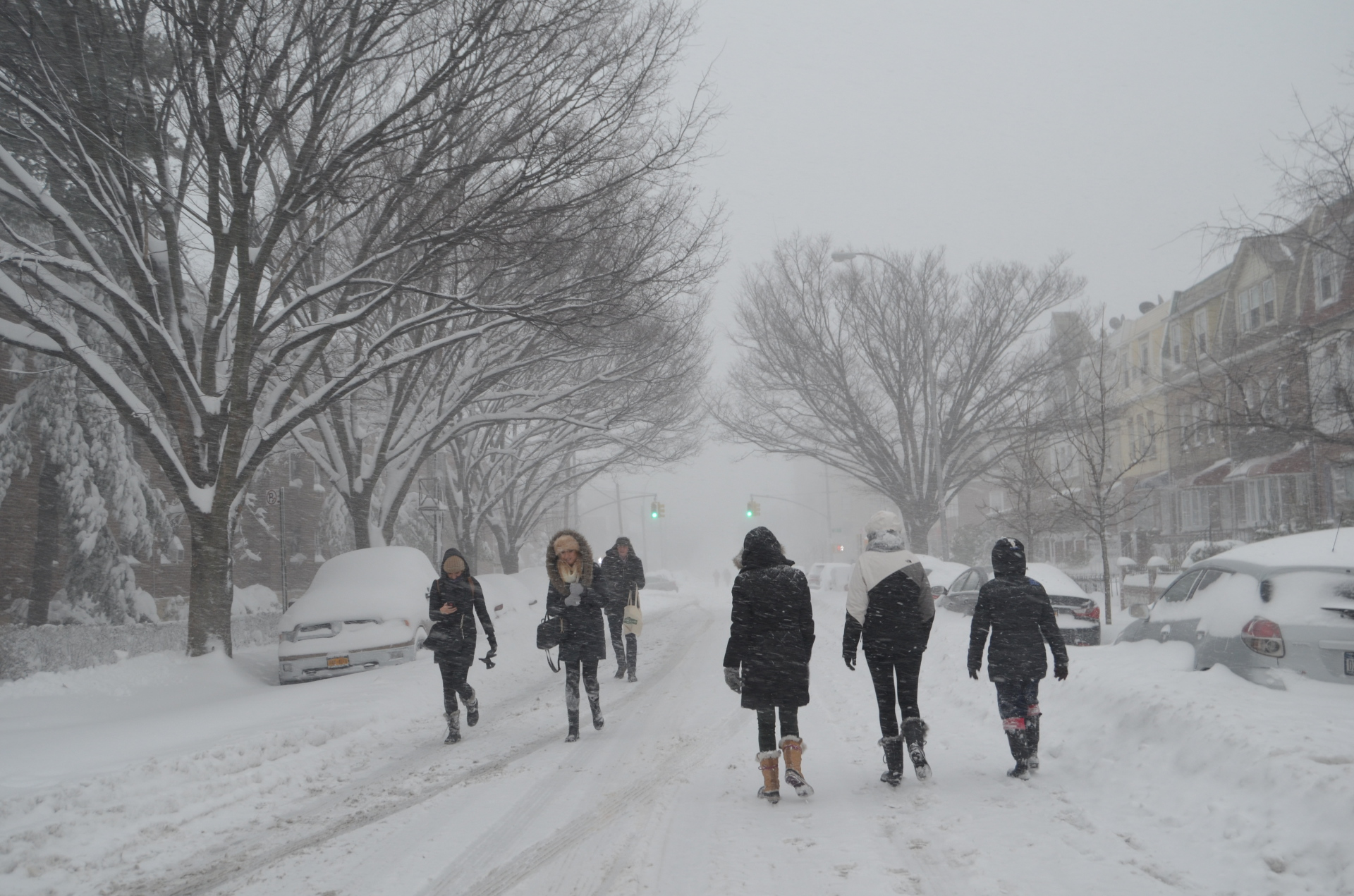 Snowstorm Pros