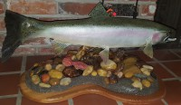Fins and Fur Taxidermy Steelhead mount