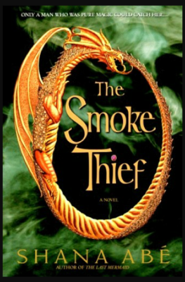"""The Smoke Thief""- By Shana Abe"