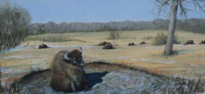 "Buffalo Wallow 10""x20"" print $75"