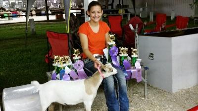 Grand Champion Myotonic Doe Jackson Co Fair 2014