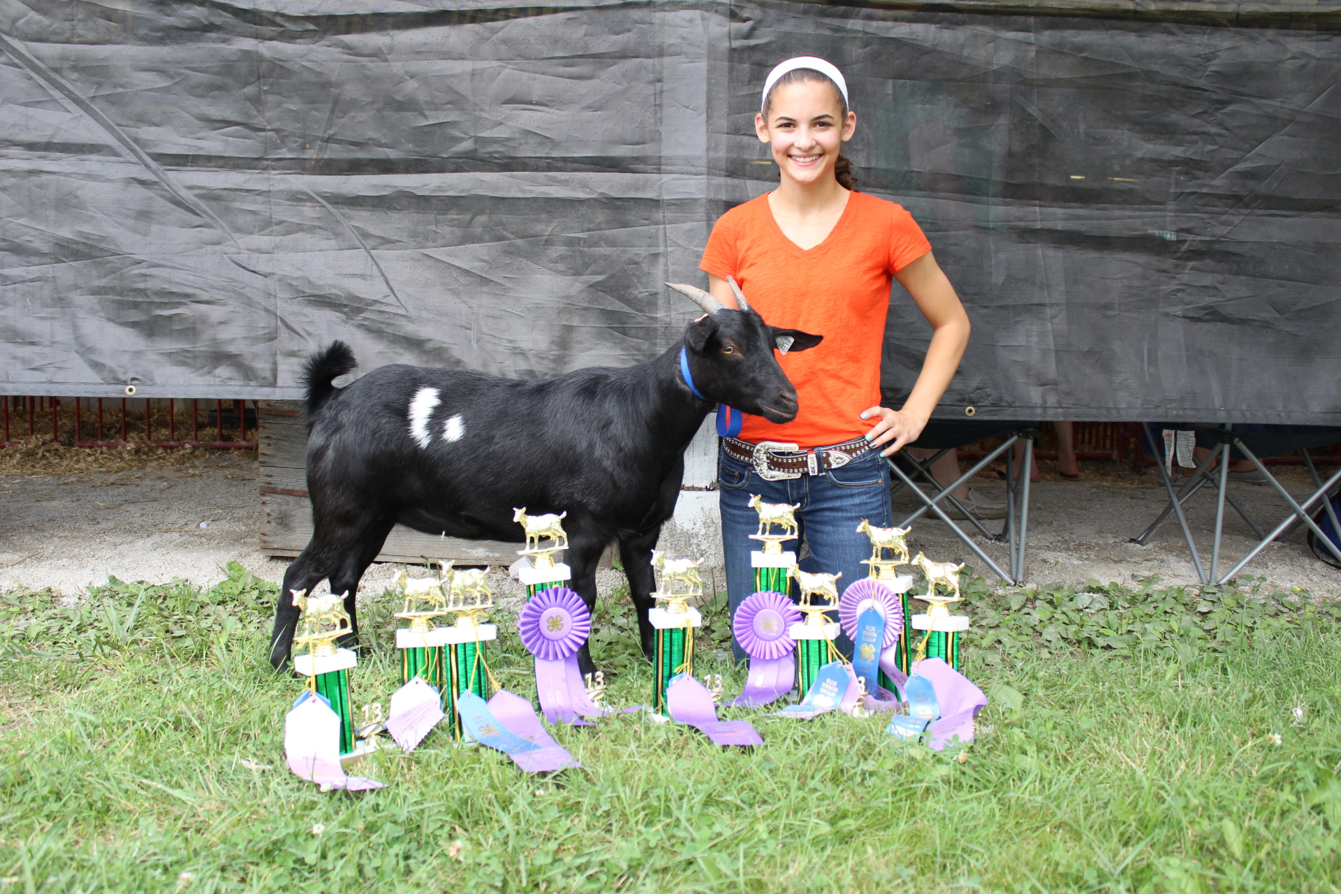 Grand Champion Myotonic Doe Jackson Co Fair 2013