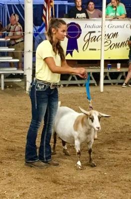 Grand Champion Myotonic Doe 2017 Jackson County Fair