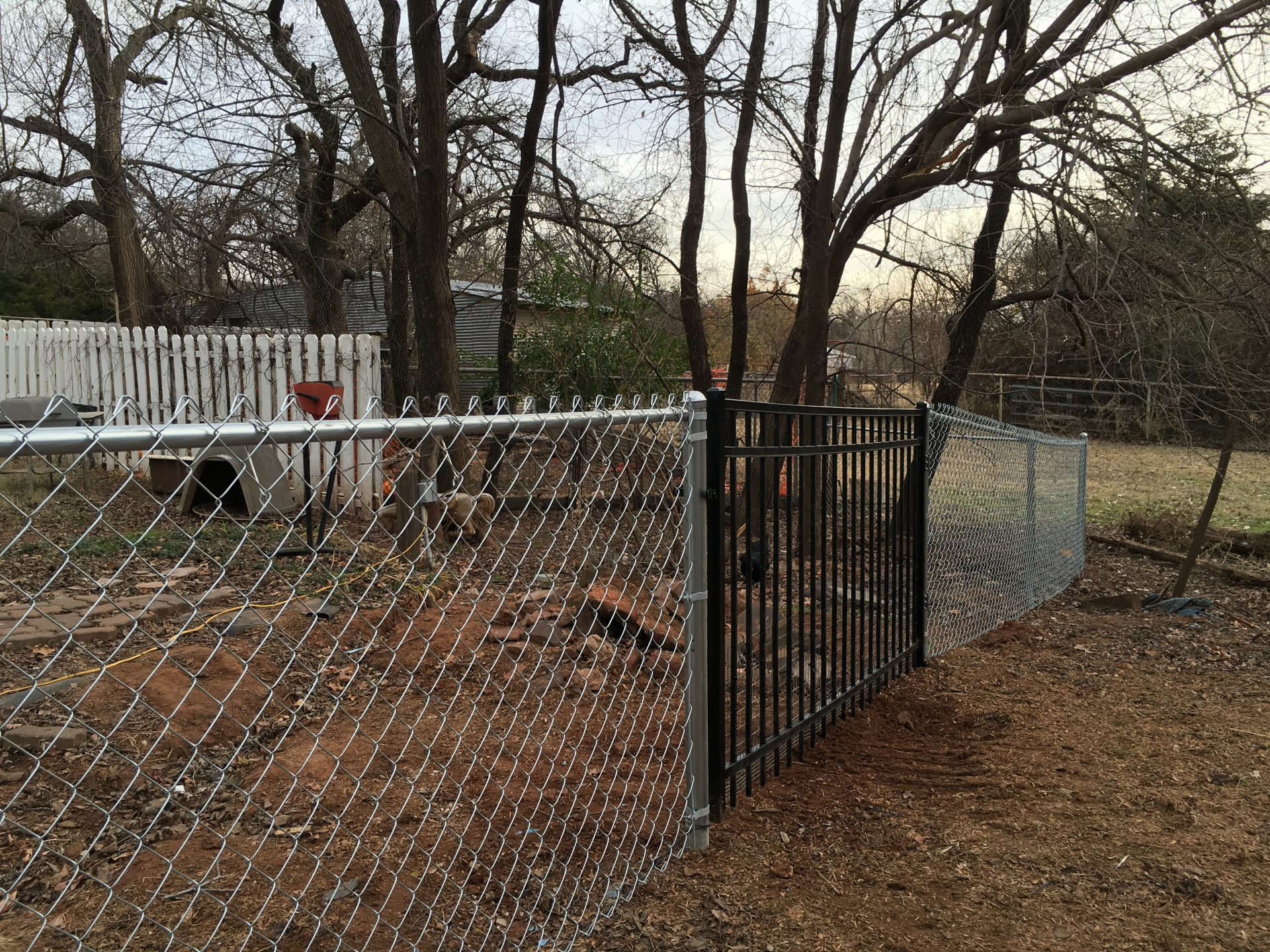 4 ft Residential Chain Link Fence with Iron Montage Gate Edmond Oklahoma Fence Gate Company