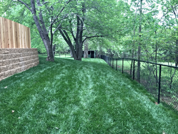 4 ft Black Vinyl Residential Chain Link Fence Security Play Yard Edmond Oklahoma Fence Gate Company