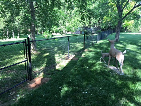 Black Vinyl Chain Link Fence and Walk Gate Security Play Yard Residential Edmond Oklahoma Fence Gate Company