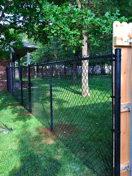 Black Vinyl Chain Link Fence Gate Security Dog Fence Play Yard Edmond Oklahoma Fence Gate Company