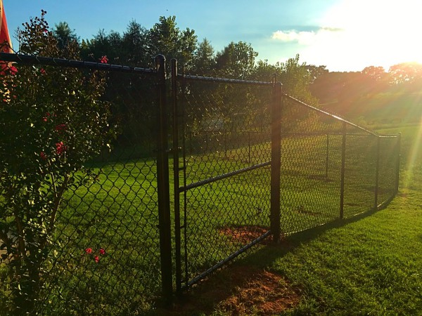 Residential 5' Black Vinyl Chain Link Fence Walk Gate Dog Fence Edmond Oklahoma Fence and Gate Company