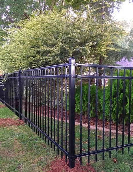 Dog Fence, Edmond Fence Company, Iron Fence, Secure Fence, Iron Fencing, Oklahoma Fence Company, OKC Gate Company