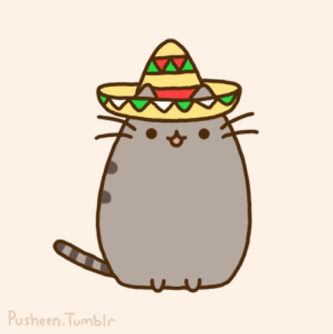 Mexi-Kitty