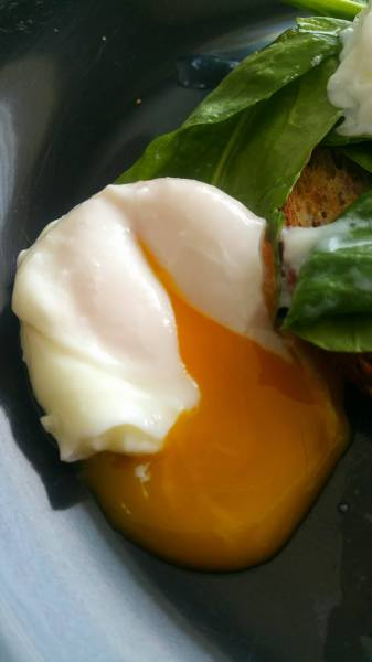 How to Master the Poached Egg