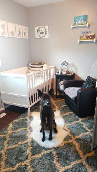 Felix's Nursery Tour