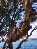 floralinstallation; centralcoastflorist; florist; sydneyflorist; wollongongwedding; sydneywedding; centralcoastwedding
