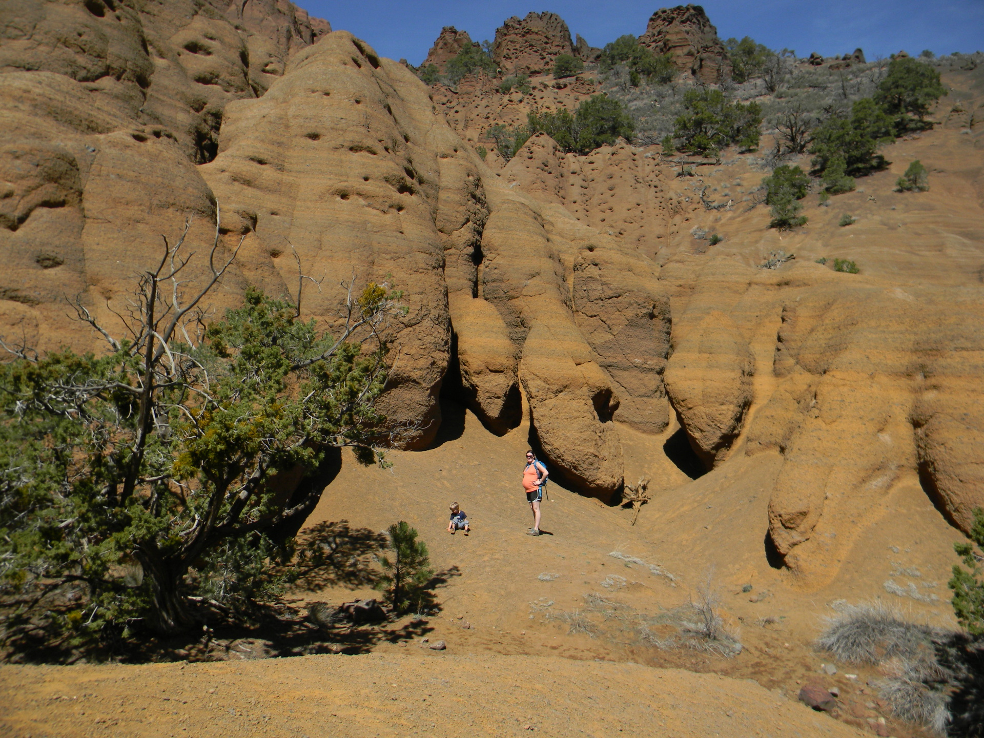 red mountain geologic area flagstaff hiking
