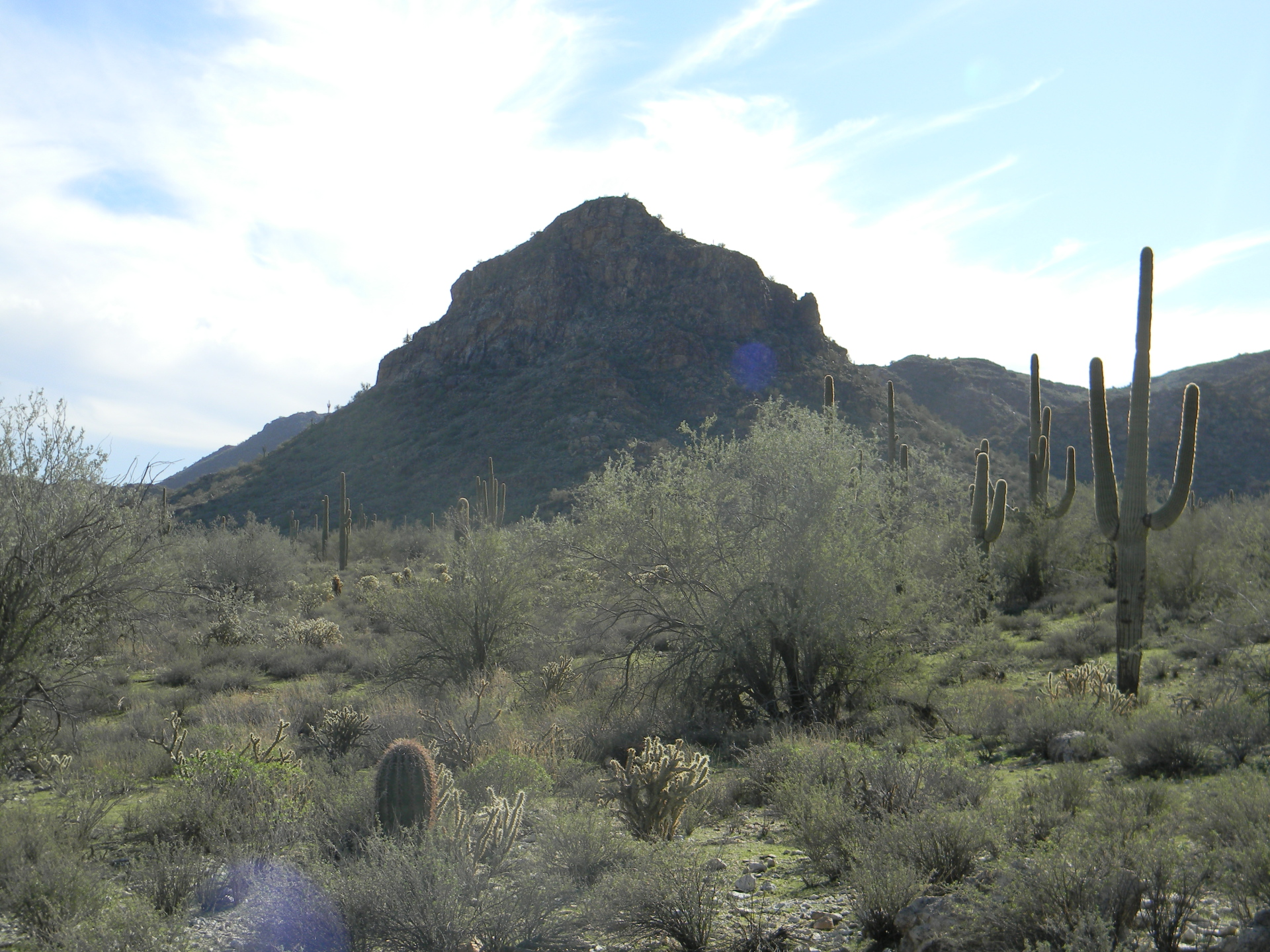 Sonoran Desert Mountains, Arizona Backpacking