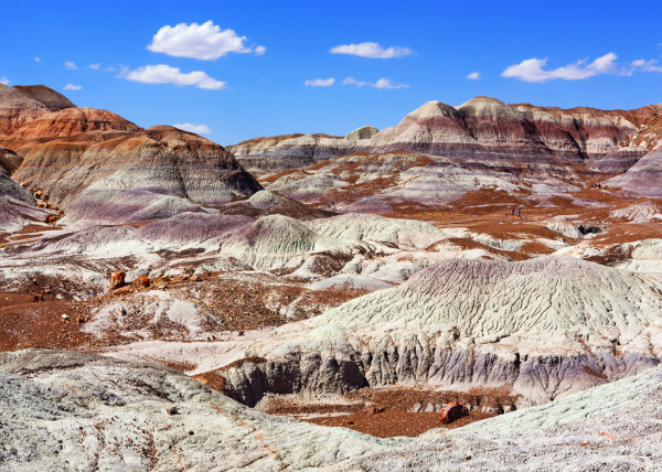 petrified forest national park blue mesa