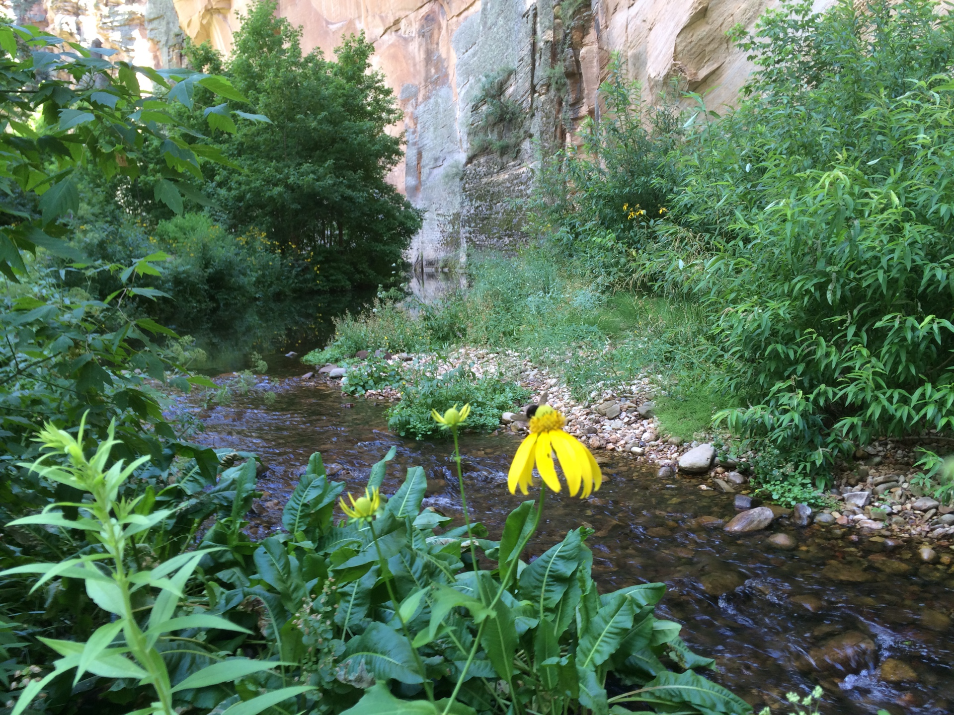 west clear creek sedona hiking