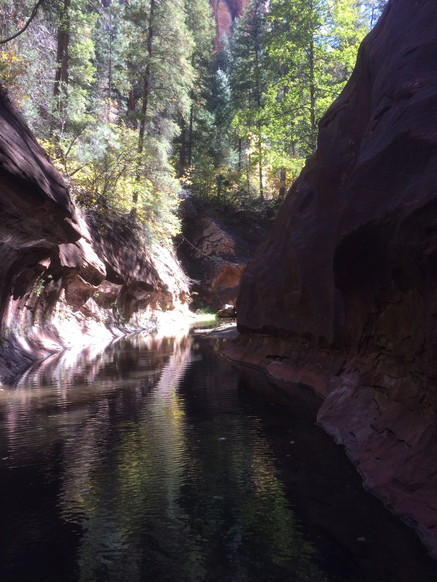West Fork Narrows, Oak Creek Canyon & Sedona