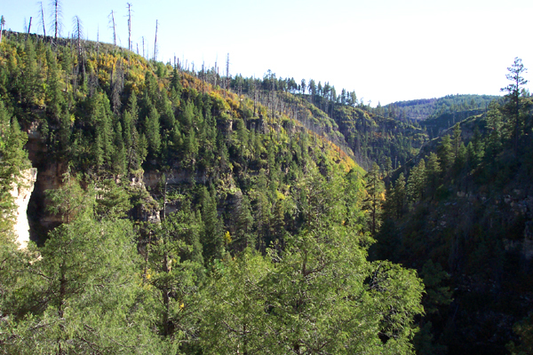 willow crossing mogollon rim hiking