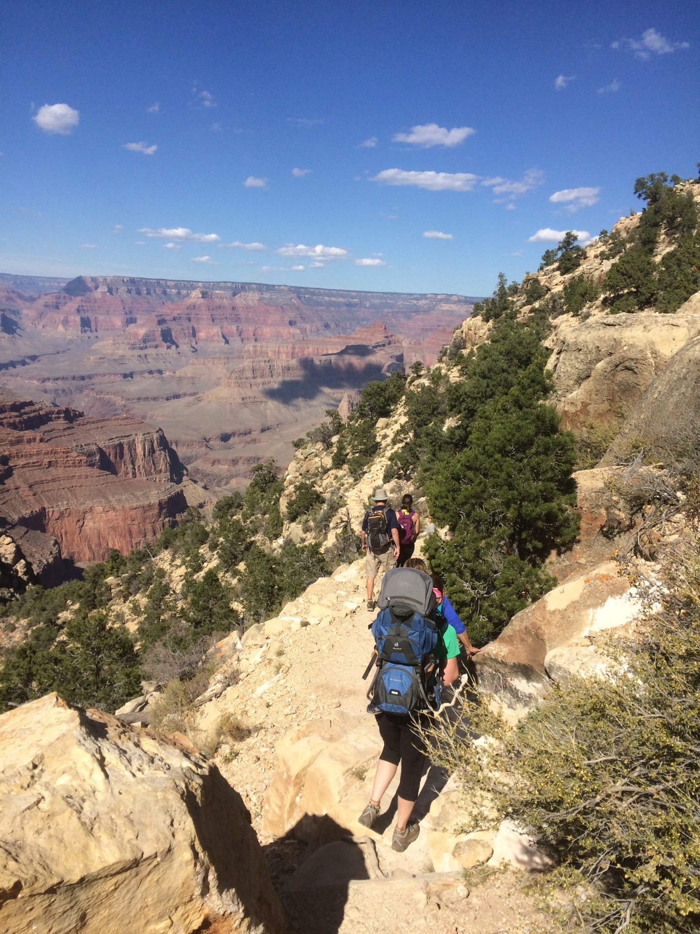 Vistas and Voyages, Grand Canyon