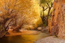 Fall in Aravaipa Canyon, Arizona